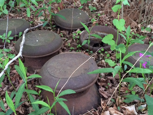 "One of our ""wonders""...why were six milk cans buried out back just up to the rim?"