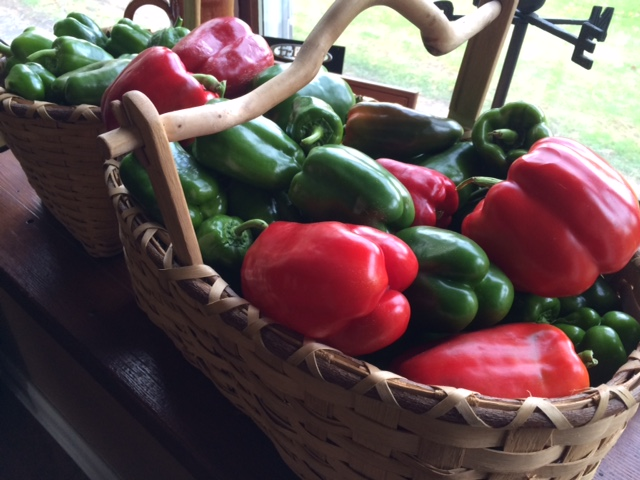 A bountiful harvest means a lot that needs to be tended to!