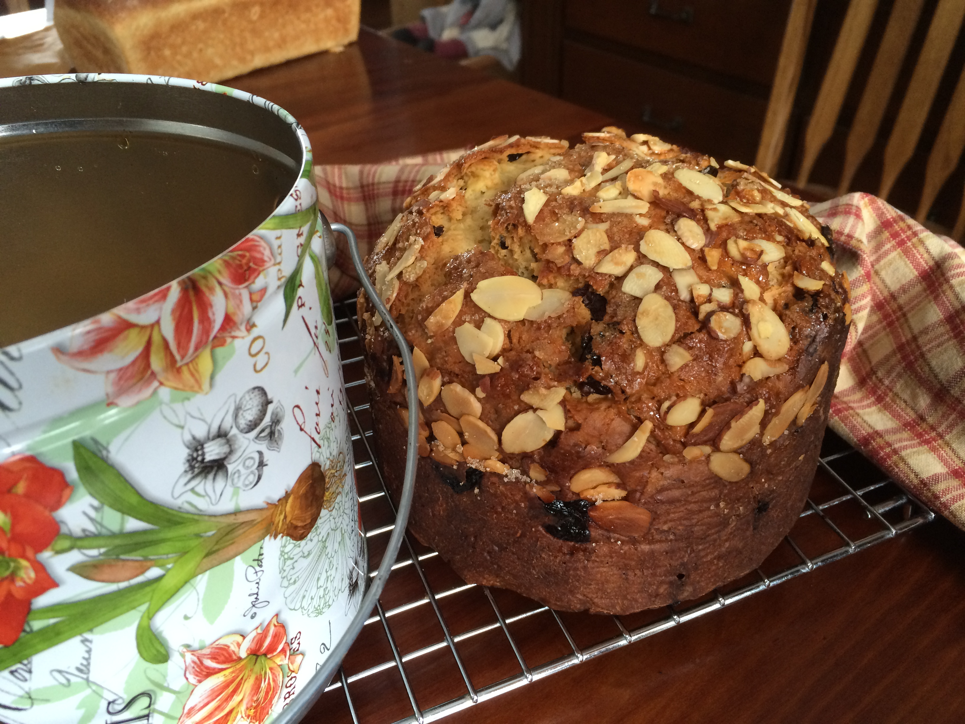 My panettone next to the cookie bucket I baked it in!