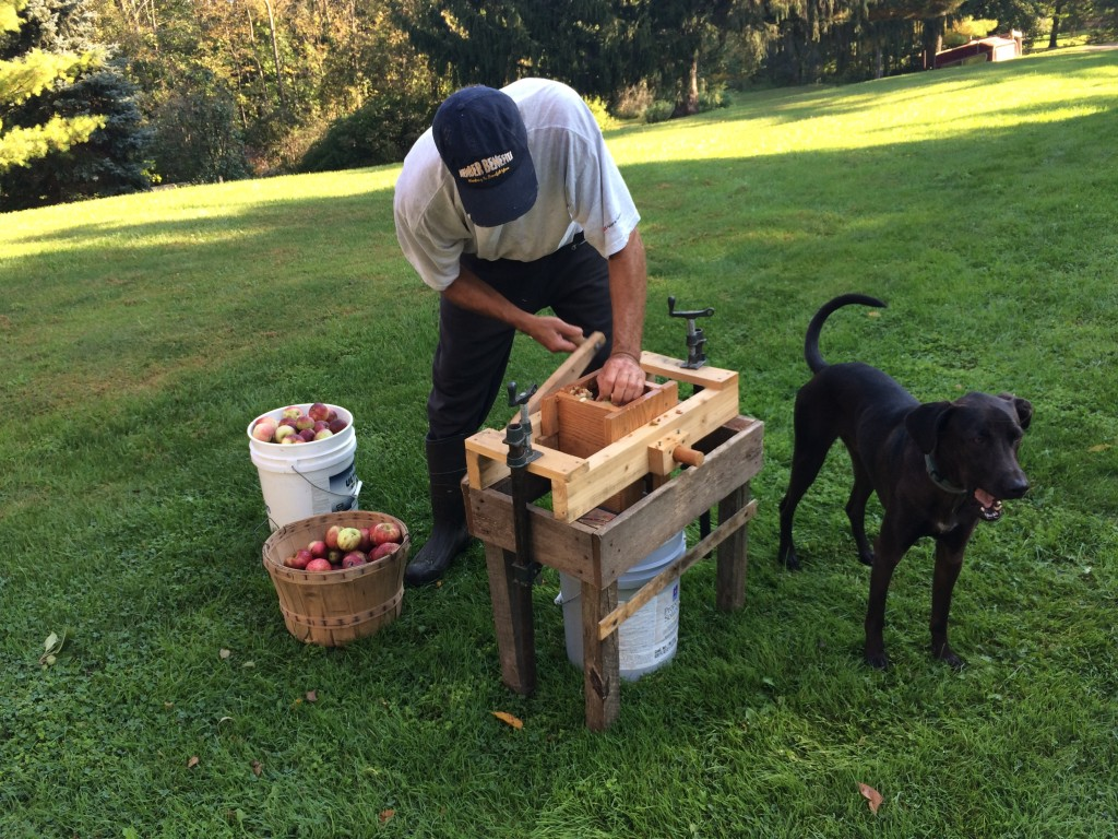 What could be better than his home-made apple crusher and Milo supervising?